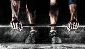 Proteinpulver Test - Was einen gesunden Muskelaufbau ausmacht